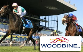 Woodbine Mile in Toronto takes place on Sunday