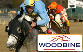 $63,500 Allowance takes place at Woodbine today