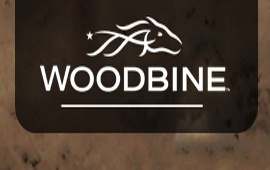 Pick your winners for Fridays races at Woodbine
